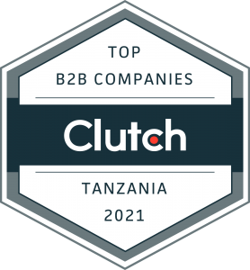 top mobile app developer in Tanzania,Mobile app training,ecommerce app,software developers,Tanzania technology